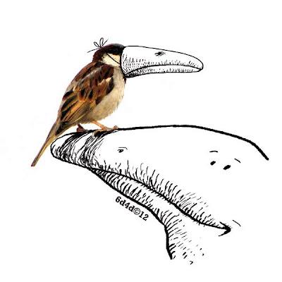 moebius-jean-giraud-arzak-sparrow